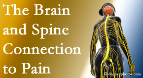 Gormish Chiropractic & Rehabilitation shares at the connection between the brain and spine in back pain patients to better help them find pain relief.