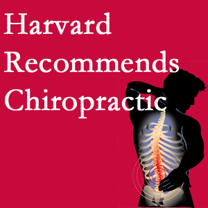 Gormish Chiropractic & Rehabilitation offers chiropractic care like Harvard recommends.