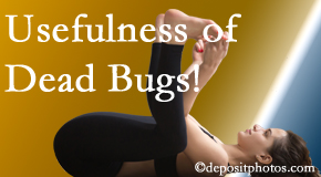Gormish Chiropractic & Rehabilitation finds dead bugs quite useful in the healing process of Carrolltown back pain for many chiropractic patients.