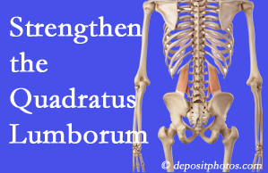 Carrolltown chiropractic care offers exercise recommendations to strengthen spine muscles like the quadratus lumborum as the back heals and recovers.