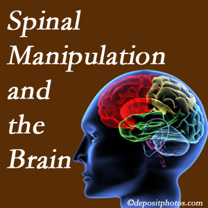 Gormish Chiropractic & Rehabilitation [presents research on the benefits of spinal manipulation for brain function.